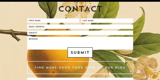 10 Effective Contact Us Forms – Web Design Inspiration